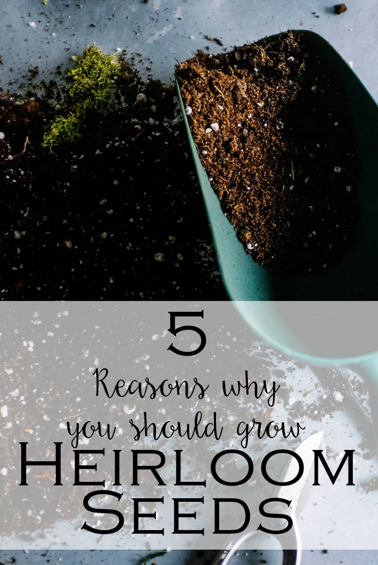 5 Reason You Should Grow Heirloom Seeds