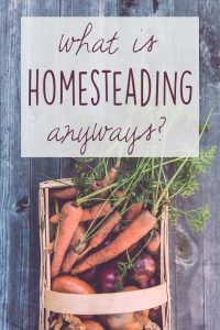 What is Homesteading Anyway?