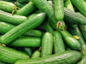 Read more about the article Cucumber Fruit Or Vegetable